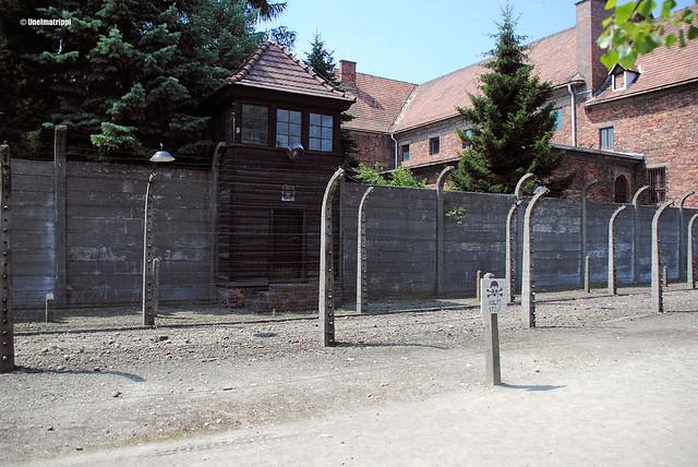 Aitaa ja rakennuksia Auschwitzissa