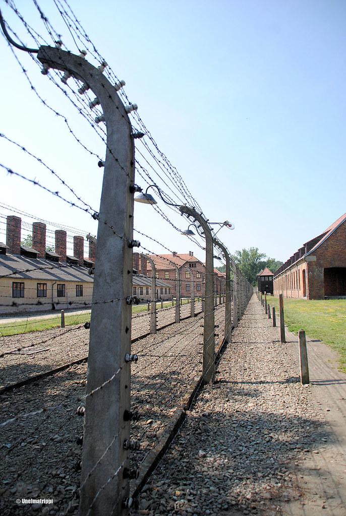 Piikkilanka-aita Auschwitzissa