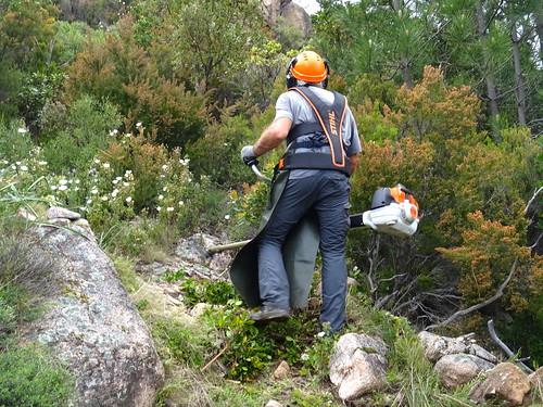 Débroussaillage sur le PR6 dans la descente de Cuva