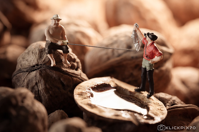 nuts fishing