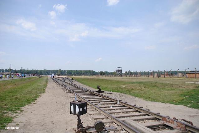 Junaraiteita Auschwitzissa
