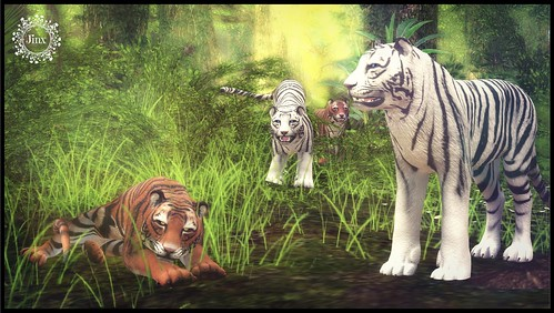 coming soon to We Love Roleplay - Bento Tiger Avatar