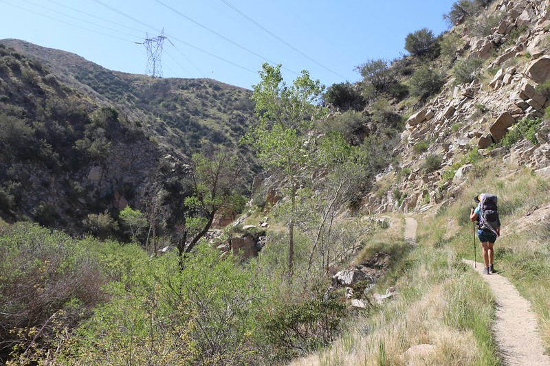 The PCT in Crowder Canyon really hugs the wall of the canyon - we could tell that at one time there was a road there