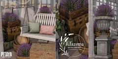 Pitaya - Alfazema @ Anthem