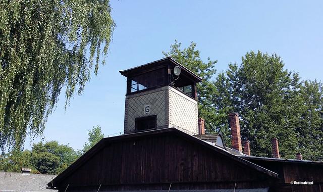 Vartiotorni Auschwitzissa