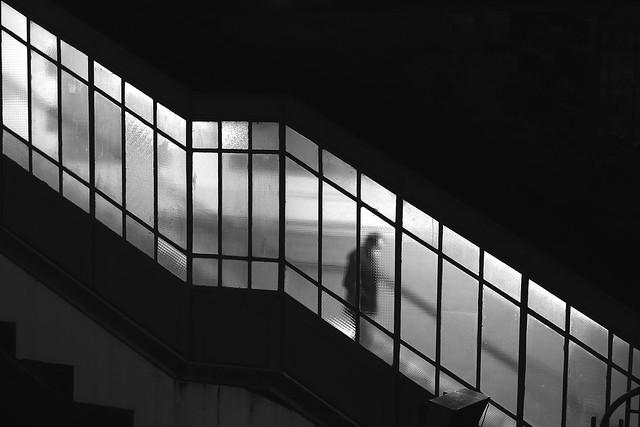 Behind the veiled windows