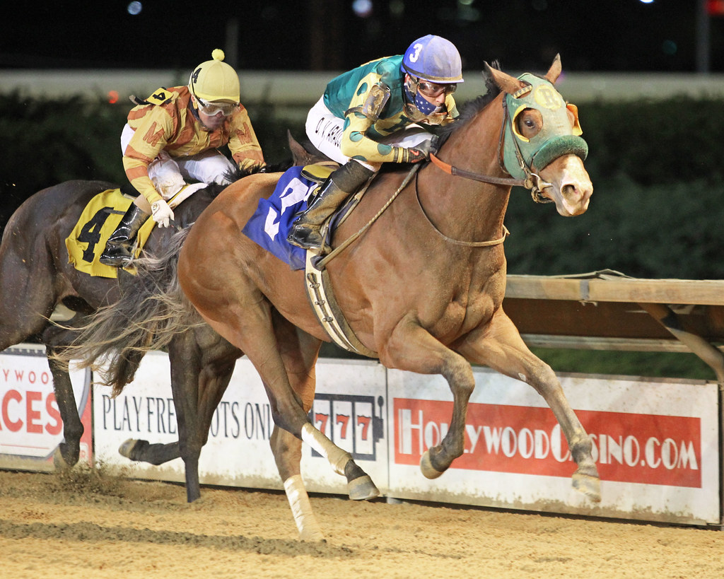 DOOR BUSTER won the Its Binn Too Long Stakes 05-01-21. Photo by Coady Photography.