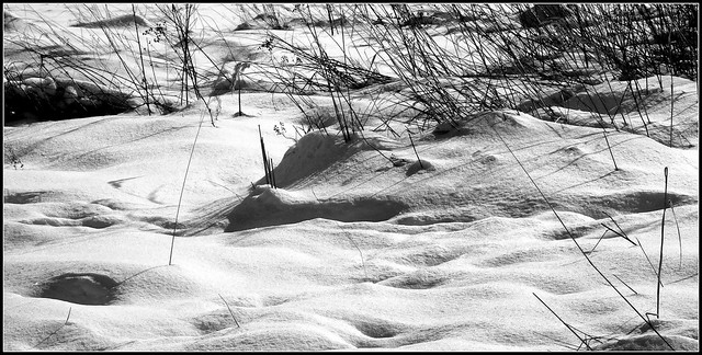 Wspomnienie zimy.