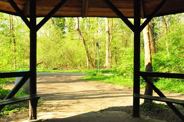 April 2021 ... Mannheimer Waldpark am Rhein ... Brigitte Stolle