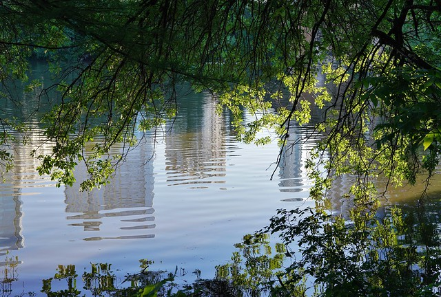 Austin: Lady Bird Lake