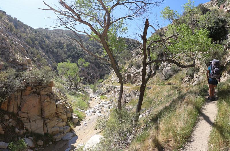 We really enjoyed hiking in Crowder Canyon