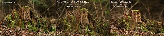 Huawei P20 Pro vs. Canon 6d mk2