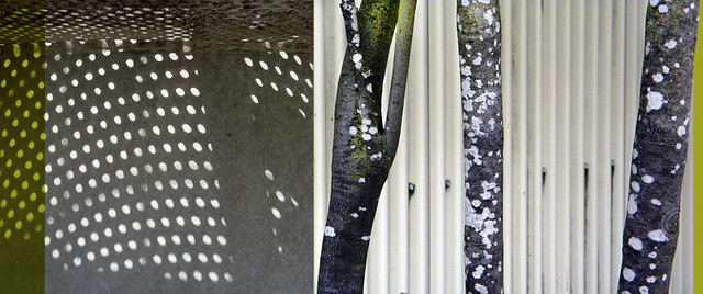 abstract diptych combining the dotted shadow of a perforated steel stairway with trees whose bark is splotched with white lichen