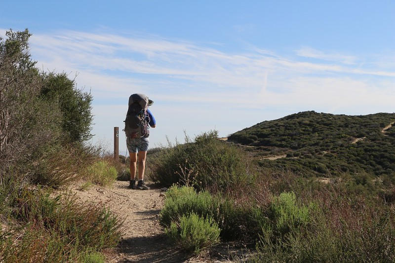 Where the PCT crosses Cleghorn Ridge - the high point of our day's hike