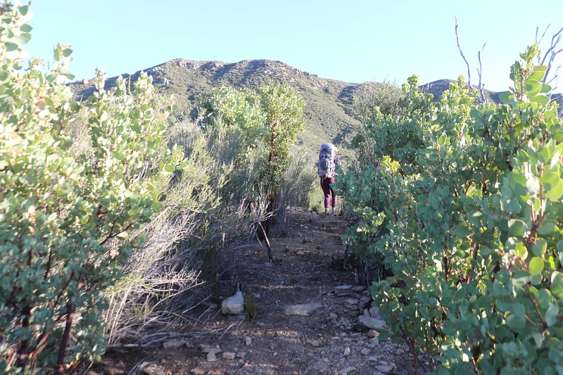 We lucked out and someone had worked hard to maintain this old road (or trail) or we would have had to turn around
