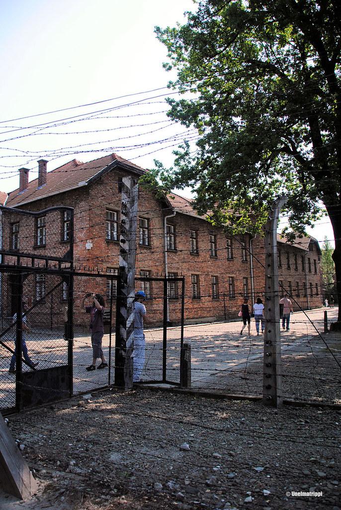 Piikkilankaa Auschwitzissa
