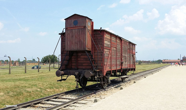 20151004-Unelmatrippi-Auschwitz-130637