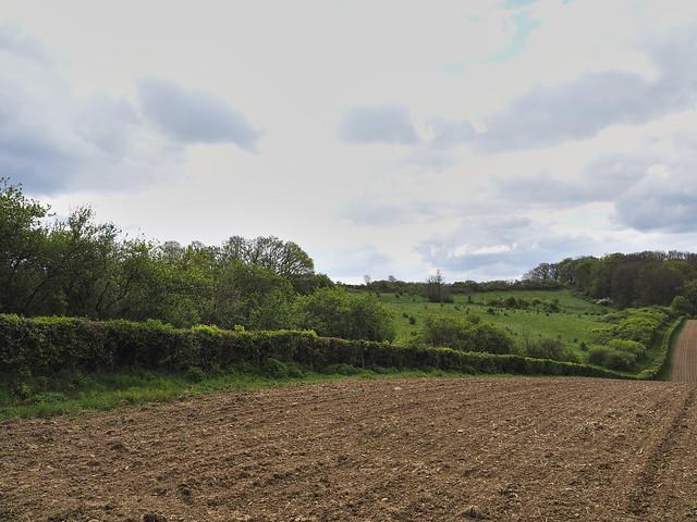 Landscape Valkenburg Limburg