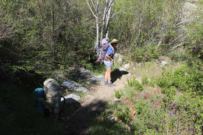 We were ready to hike on after a break in the shade where we collected water at PCT mile 333