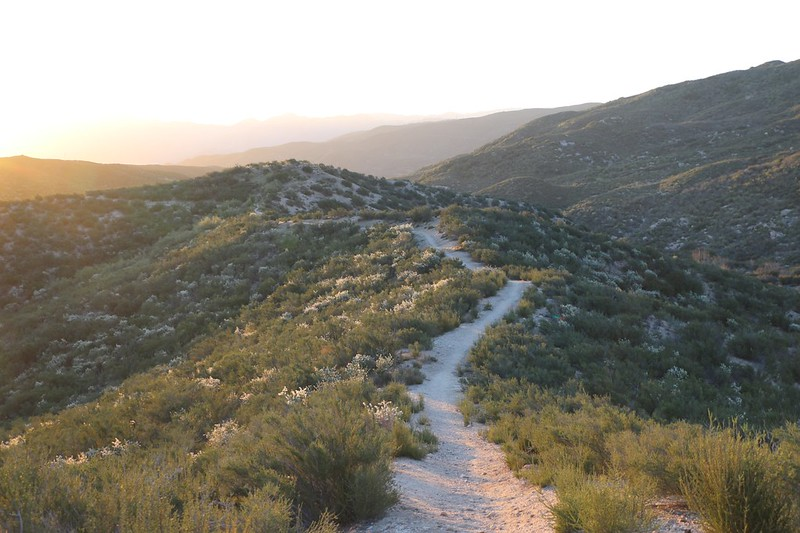 Looking east along the ridge above Horsethief Canyon in the early morning light