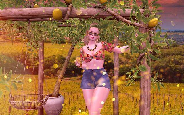 When Life Gives You Lemons, Enjoy!!!