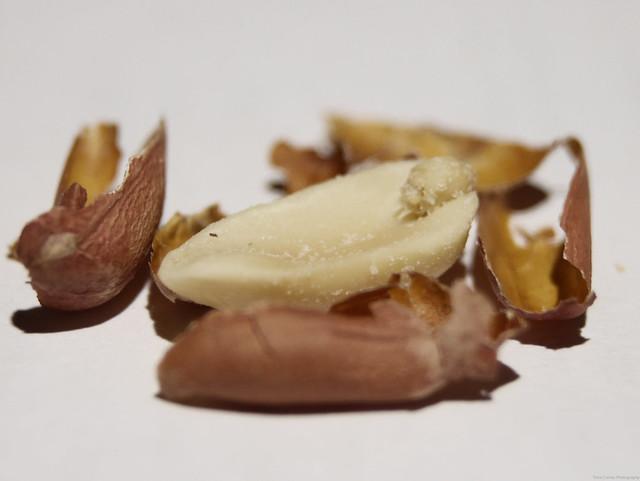 Salted Peanut Half + Husks