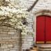 Door and Tree, Episcopal Style