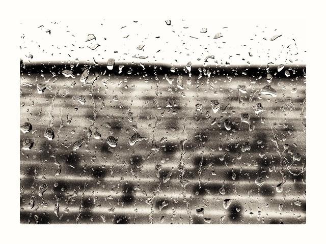 Roof tiles in the rain