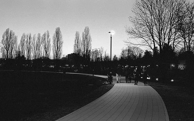 Nocturnal walks 07