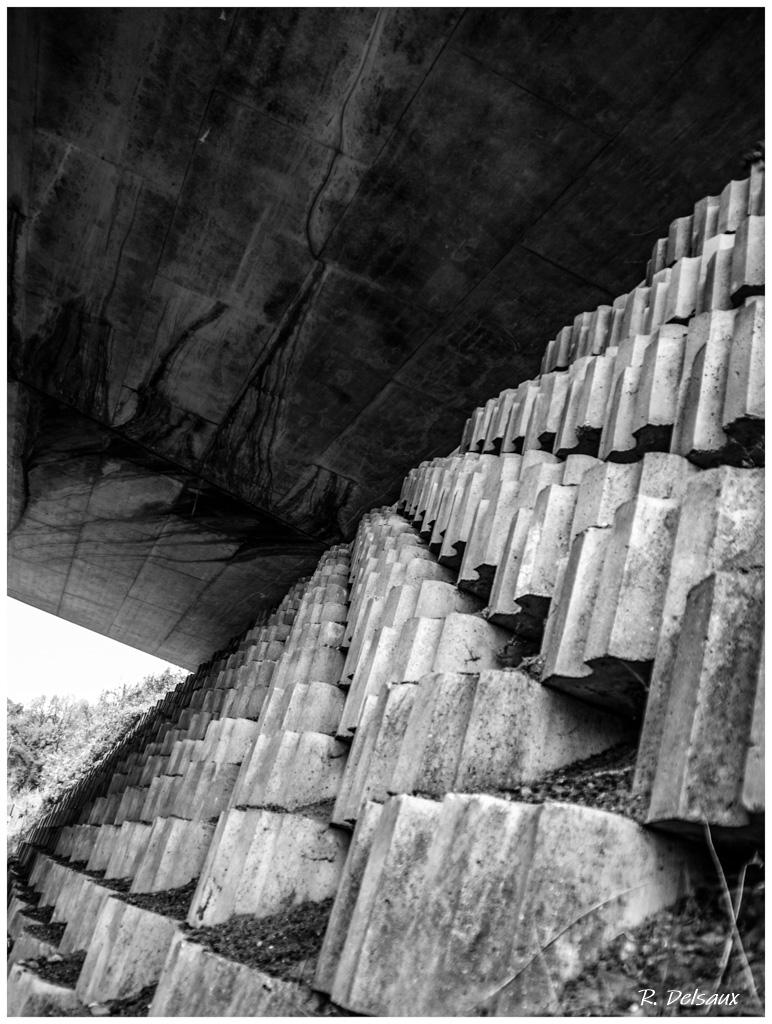 Noir et Blanc / Sépia / Désaturation partielle / Traitements divers - Page 20 51155613969_50728523cc_o