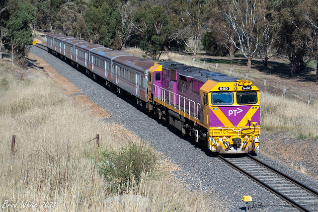 N460 'City of Castlemaine' 8097