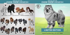 SEmotion Libellune Chow Chow Animesh