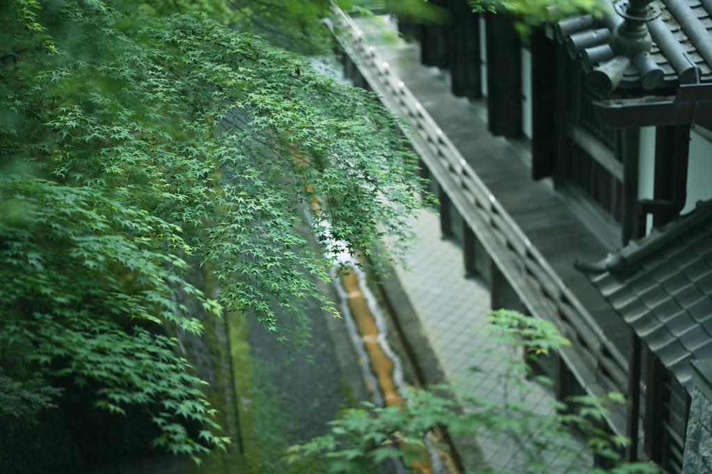 Kyoto Eikando Zenrinji Temple