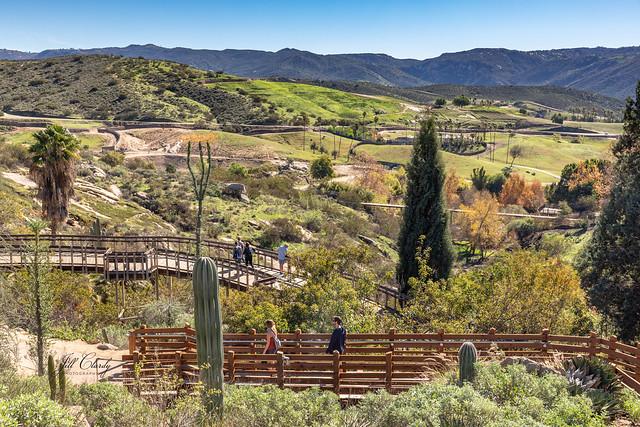 Armchair Traveling - San Diego Safari Park