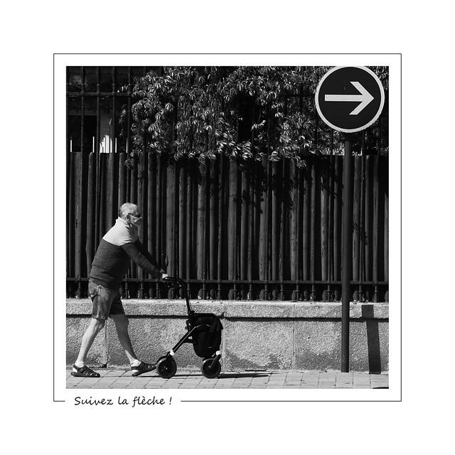 Follow the arrow ! / Suivez la flèche !
