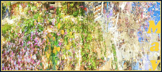 Yard Petals