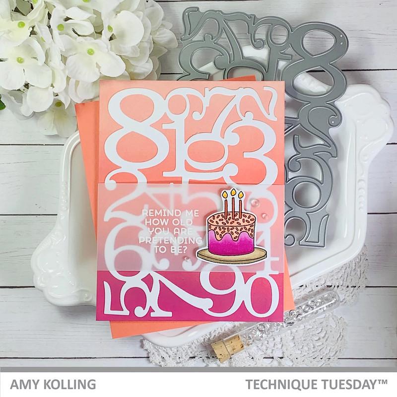 AmyK_BirthdayCelebration1_WM