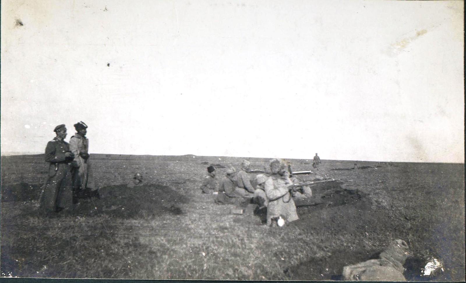 275. Полтавская губерния. Август 1919