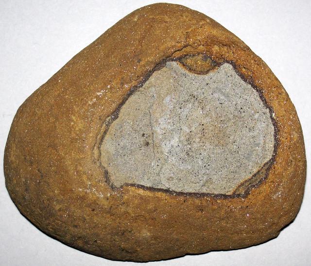 Ironstone-bordered nodule 2