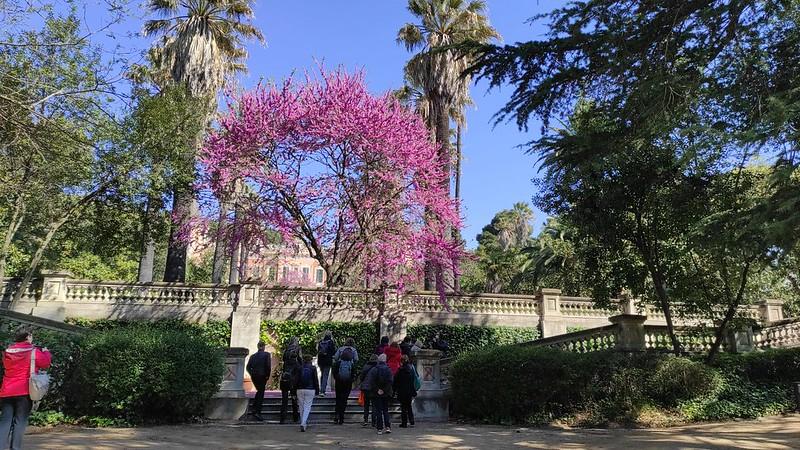 Visites d'Art i Història-L'ermita de Sant Cebrià