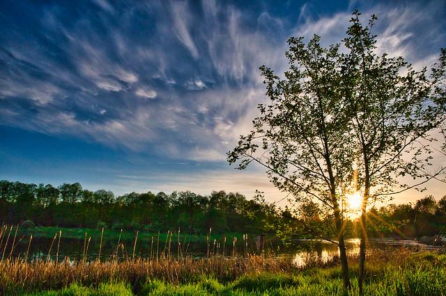 Surrey Lake Park