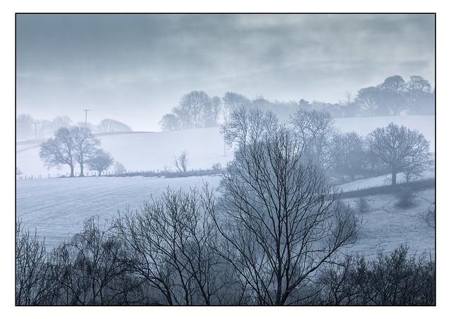 Misty Winter Morning 8232