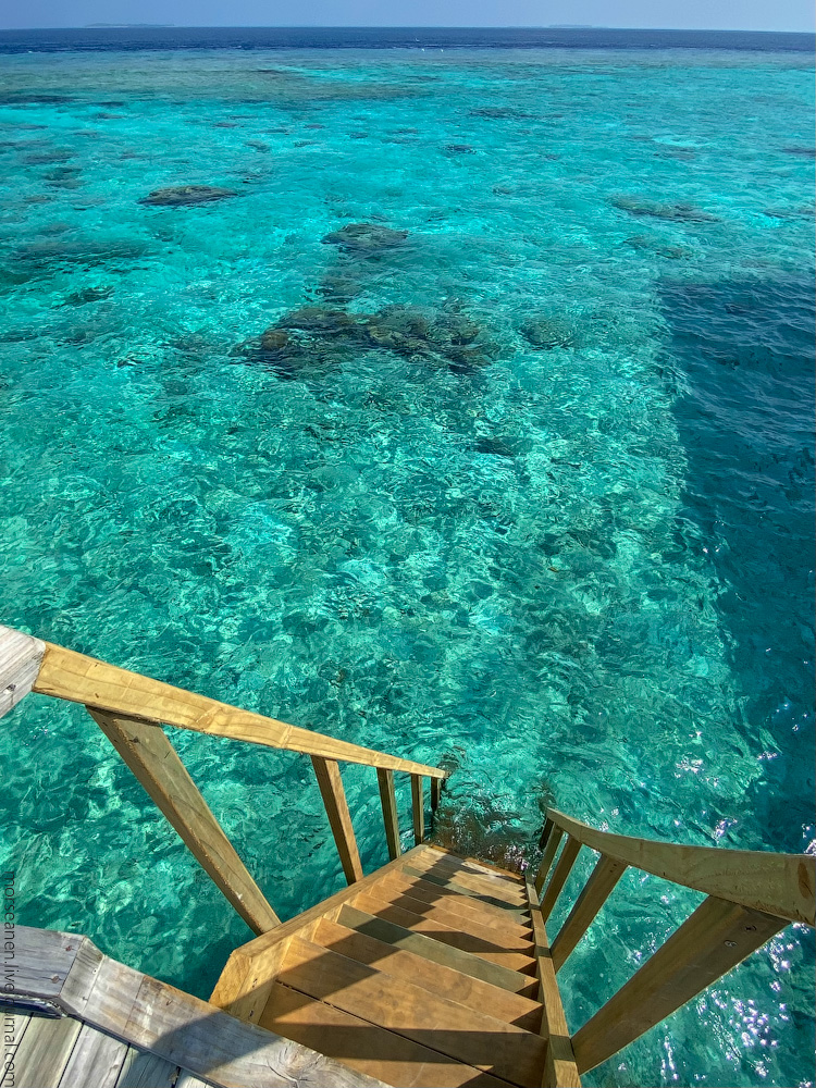 Maledives-(67)