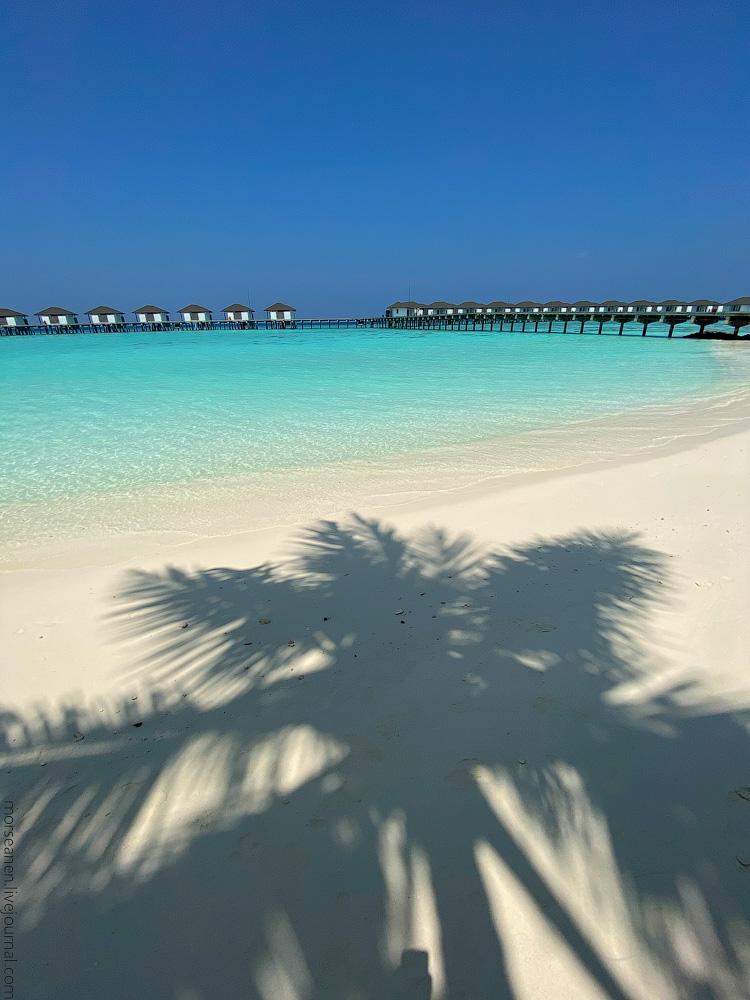 Maledives-(55)