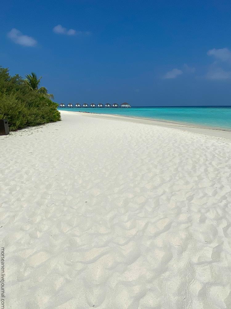 Maledives-(36)