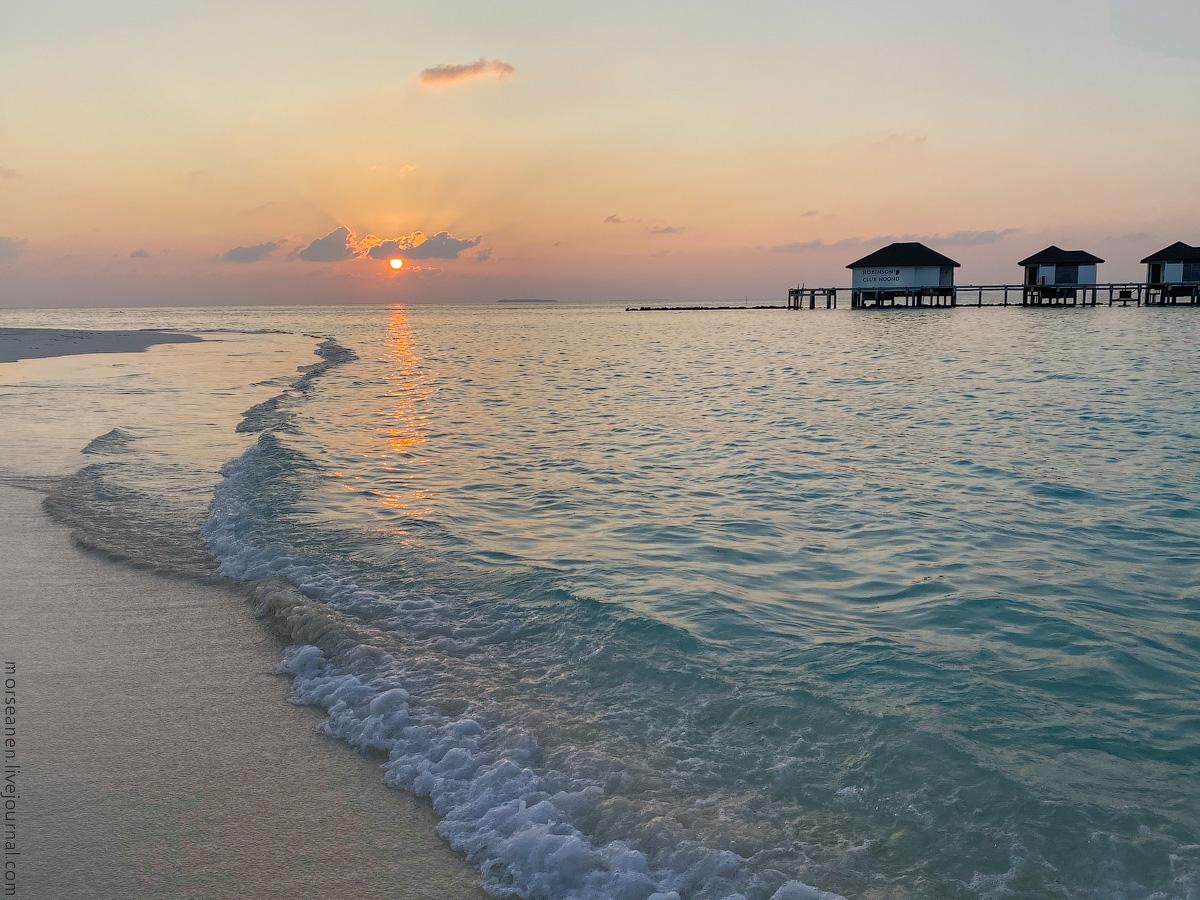 Maledives-(30)