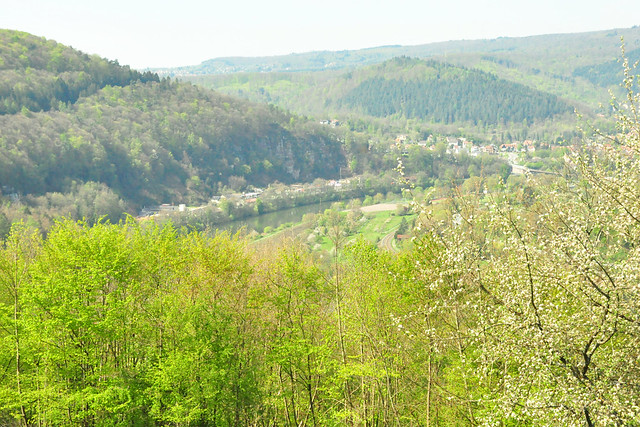 April 2021 ... Dilsberg am Neckar ... Brigitte Stolle