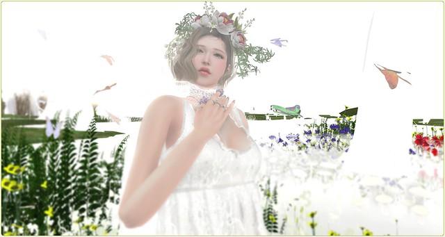2021.5.4 SSお題バトル:蝶々(Butterfly)