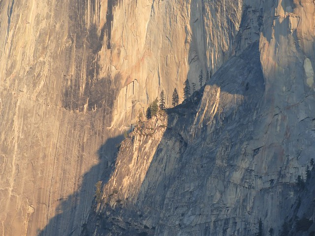 Detail of the face of Half Dome