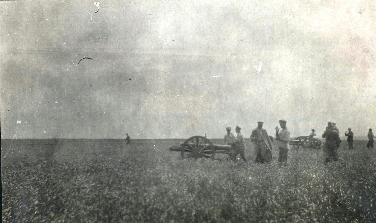 277. Полтавская губерния. Август 1919